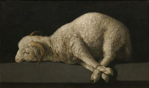 66-lamb-of-god-francisco-de-zurbaran